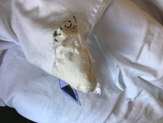 Bancroft Hotel: Ripped duvet covers