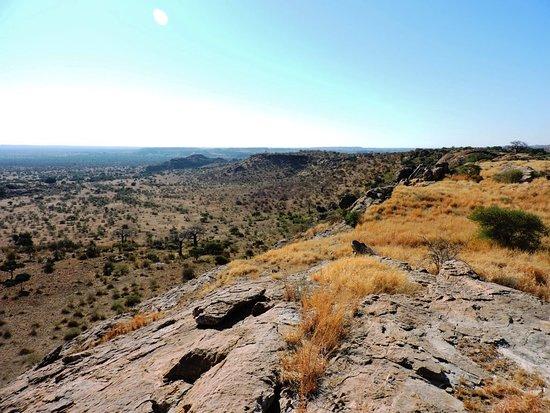 Cheno Travel & Safari Tour: Pause panorama sur Mashatu reserve