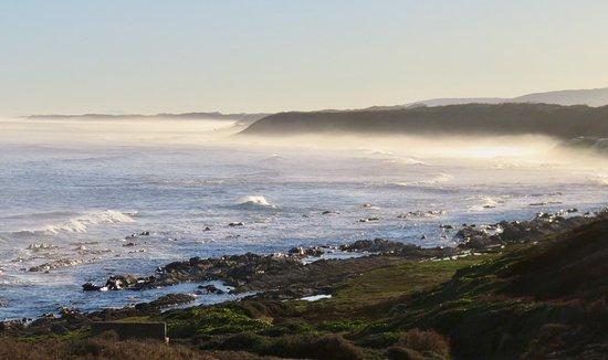 Port Elizabeth, Sudáfrica: photo3.jpg