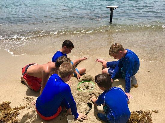 """British Virgin Islands: The kids had a fun time building a """"beachside aquarium""""."""