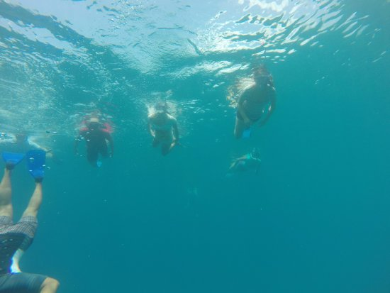 Thulusdhoo Island: Snorkeling trip to near surrounding of Thulusdoo