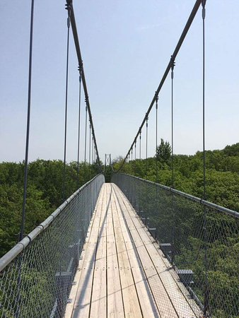 Blue Mountains, Kanada: The suspension bridge
