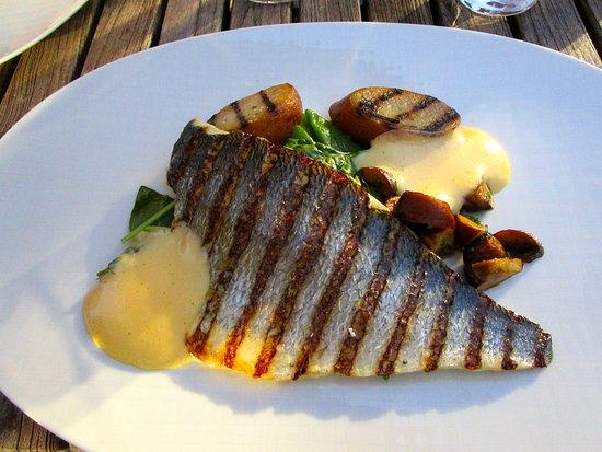 Putten, Belanda: The main course; delicious fish, namely 'Dorade'