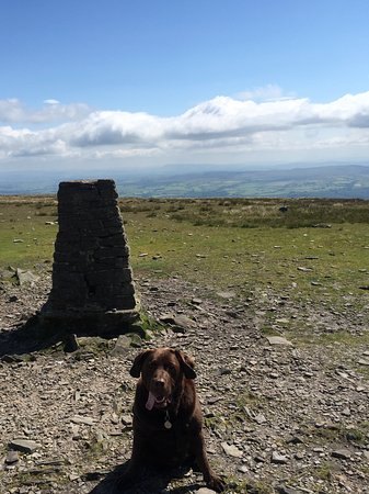 Settle, UK: Harley as he reached the top