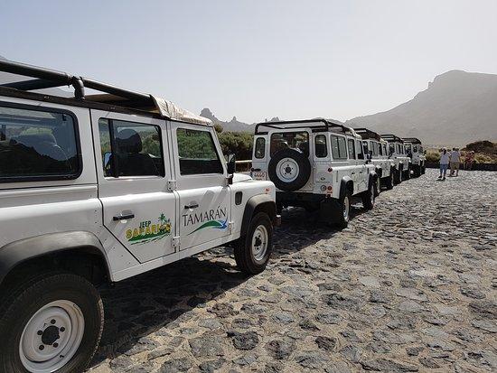 อาโรนา, สเปน: tamaran jeeps