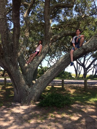 Fort Fisher State Historic Site : photo1.jpg