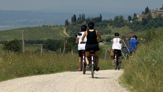 Lisciano Niccone, อิตาลี: eBike Safaris through Tuscany