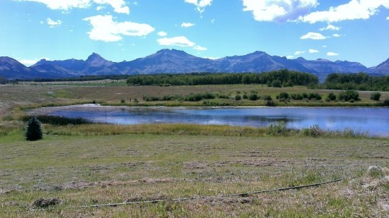 Twin Butte, Canada: The view from the deck at Dungarvan Creek B&B
