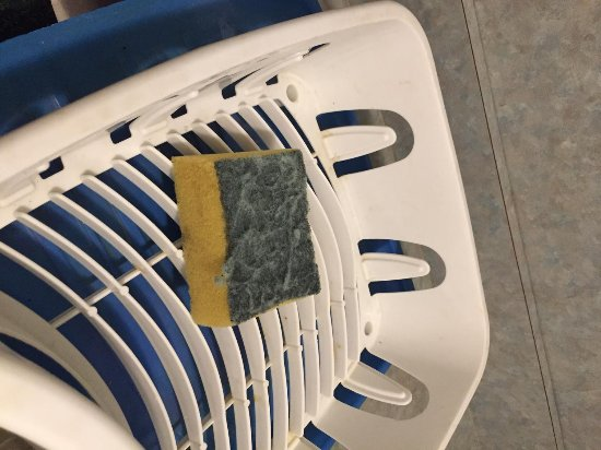 Apollo Resort Motel: Generously used sponge