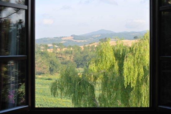 Fattoria Hotel Belvedere: panorama dalla camera