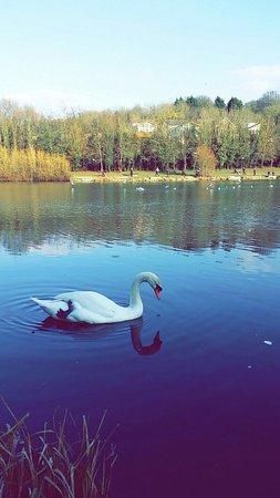 Gillingham, UK: photo1.jpg