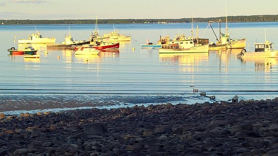Lincolnville, ME: Lobster boats on the bay at sunset