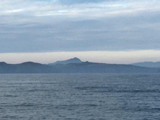 Voyages of Discovery (Ramsey Island): photo0.jpg