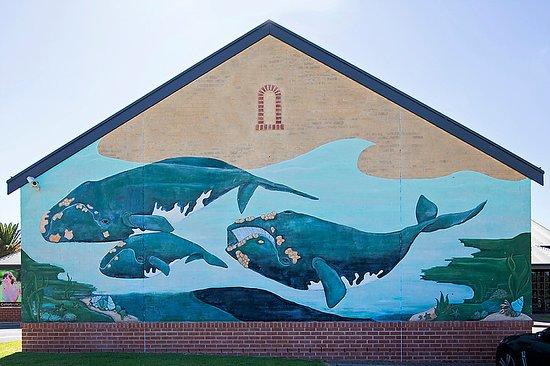 Middleton Tavern Whale Mural