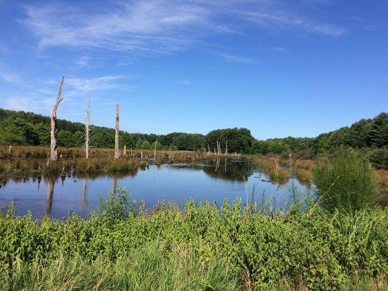 Caledon State Park