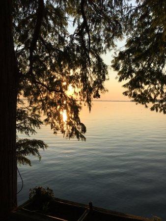 Tiptonville, TN: Lovely Sunset