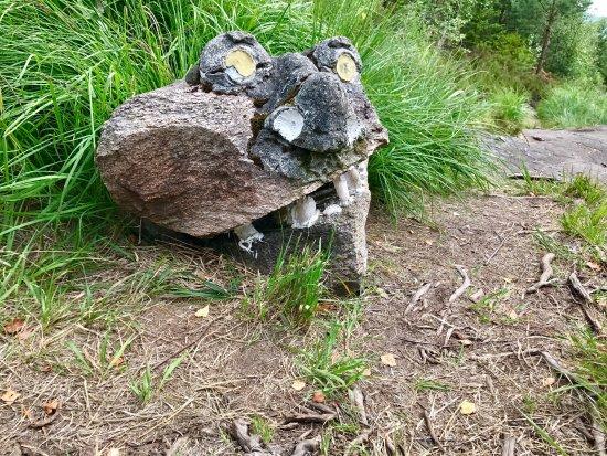 linnekleppen kart photo3.   Picture of Linnekleppen, Rakkestad   TripAdvisor linnekleppen kart