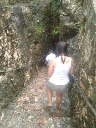 Imagen de Cenote Samula