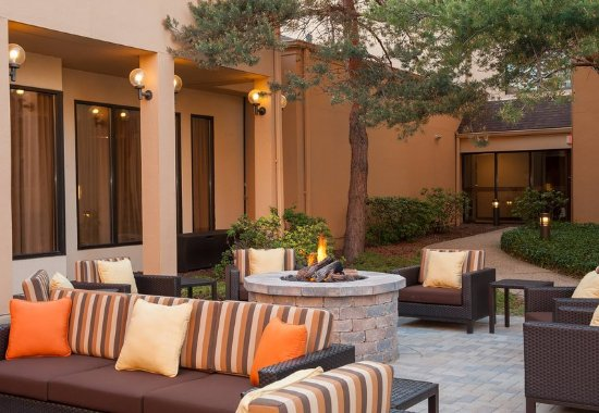 Glenview, Ιλινόις: Outdoor Fire Pit