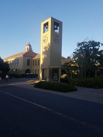Palo Alto, CA: Hermosa universidad!!!