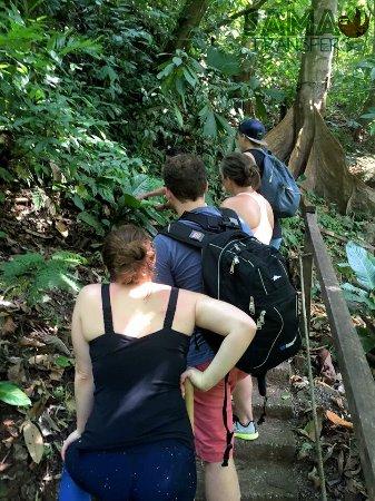 Quepos, Kostaryka: Rain Maker