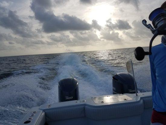 Catchalottafish Charters: 20170722_074914_large.jpg