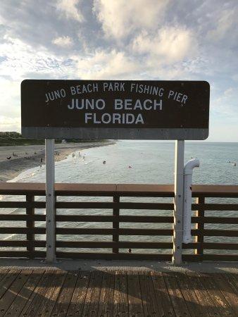 Juno Beach, Floryda: photo3.jpg