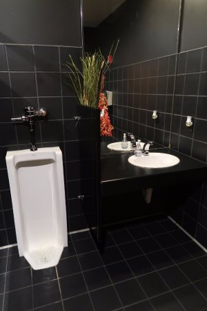 Kasa Japanese Grill & Bar: Designer bathroom, I hated to touch anything!