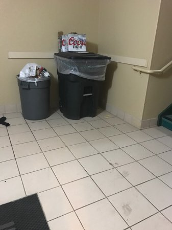 Waukesha, WI: Rat pantry: overflowing garbage in stairwell for at least a week