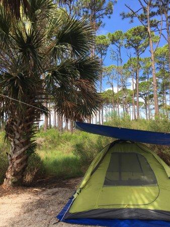 Port Saint Joe, FL: photo2.jpg