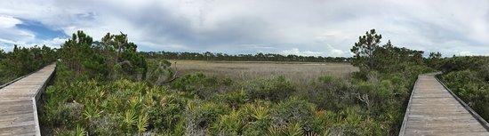 Port Saint Joe, FL: photo3.jpg