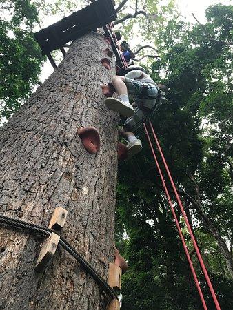 Chalong, Thailand: Jungle Xtrem Adventures Park