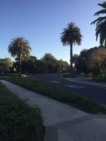 Palo Alto, CA: photo2.jpg