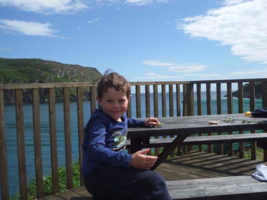 Cape Clear Island, Ireland: Cameron settled in!