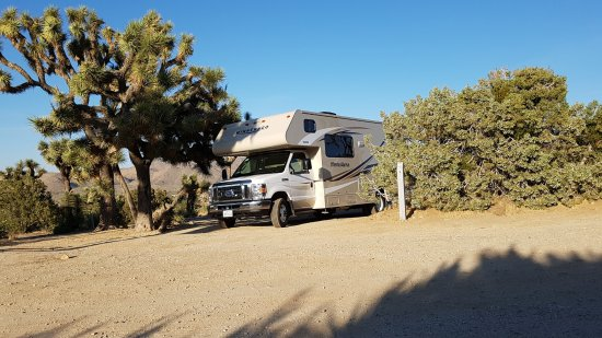 Black Rock Campground: Site 41