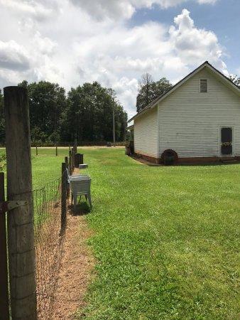 Plains, GA: photo2.jpg