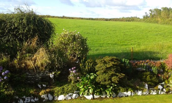 Camelford, UK: View from our bedroom