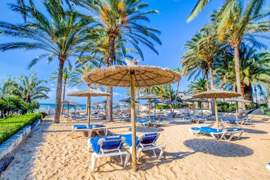 Sbh Costa Calma Beach Resort Reviews