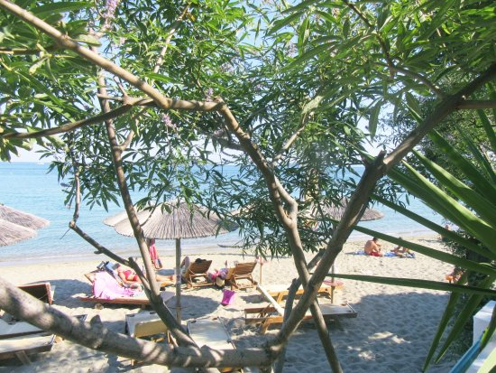 Angeliki Beach Hotel Foto