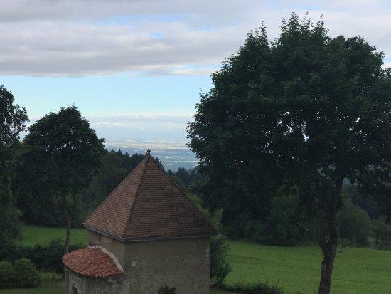Domaine de Montvianeix: photo1.jpg