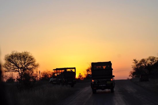 Parque Nacional Kruger, Sudáfrica: photo2.jpg