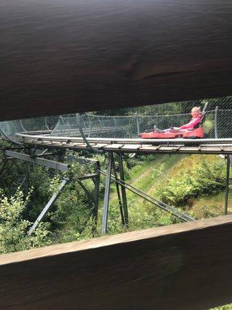 Olsberg, Germany: Rodelbahn am Erlebnisberg Sternrodt