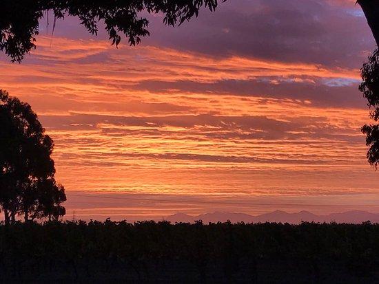 Rapaura, Νέα Ζηλανδία: photo9.jpg