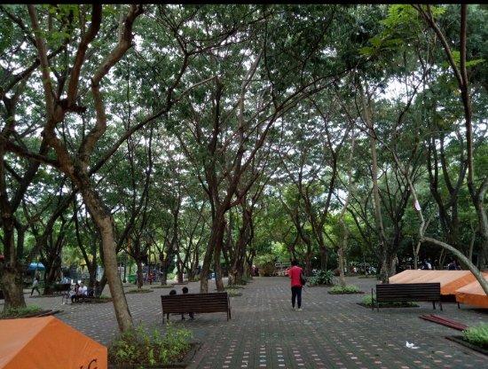 Davao City, Filippinerna: IMG_20170726_174248_large.jpg