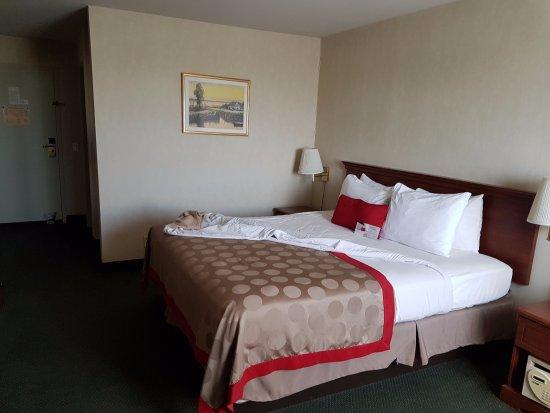 라마다 플라자 호텔 LAX - 엘 세군도 이미지