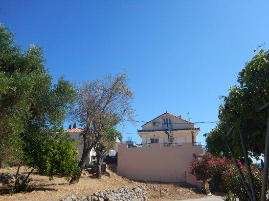 Zola, Greece: DSCN9360_large.jpg