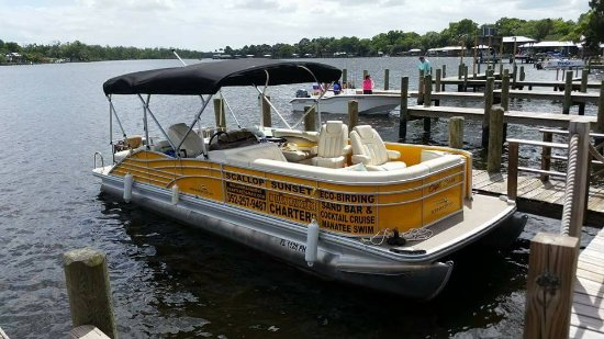 Homosassa, FL: our boat is comfortable and enjoyable for all