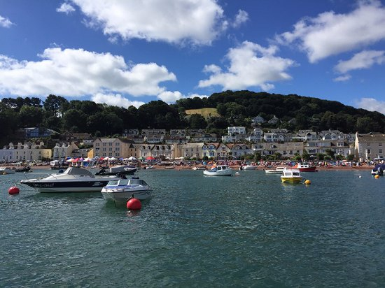 Shaldon village from the water