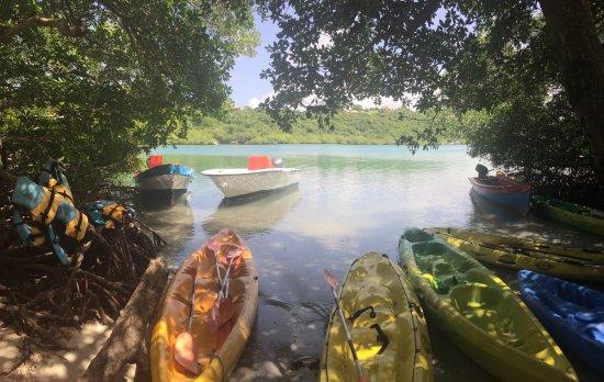 Le Vauclin, Martinica: Après-midi relax sur un îlet paradisiaque