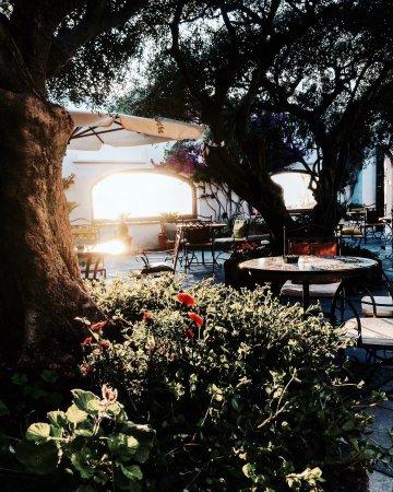 Hotel La Scogliera: photo0.jpg